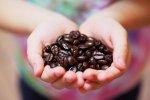 obraz - ziarna kawy